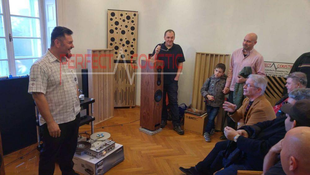 Acoustic-panel-in-Barabás-villa-2