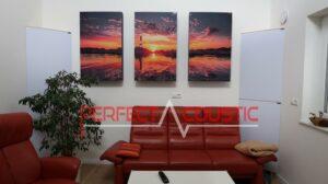 Afgedrukt-akoestisch-paneel-en-basval-bij-het-bordeauxrode-canvas