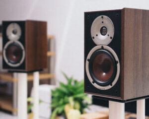 Dali-Spektor-2-speaker-main-image-300x300