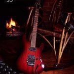 gitarist met foto-akoestische elementen (5)